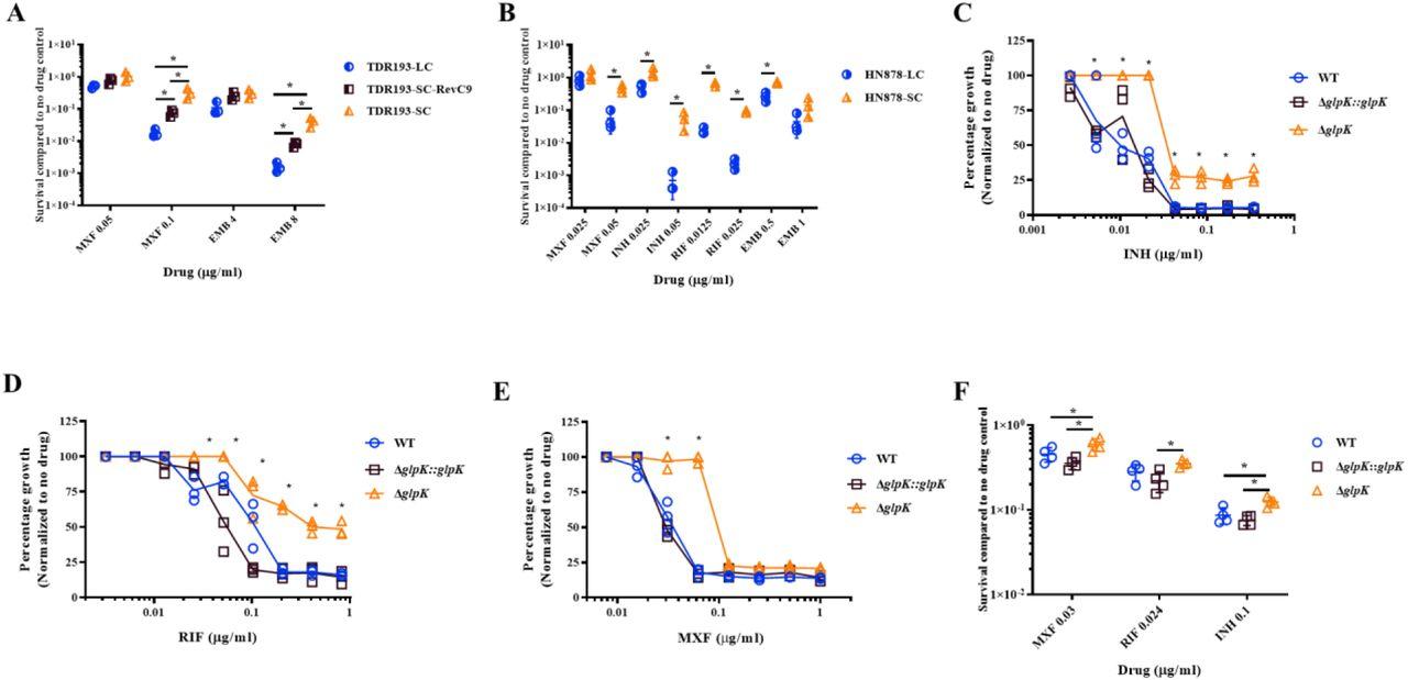 Phase variation in Mycobacterium tuberculosis glpK produces
