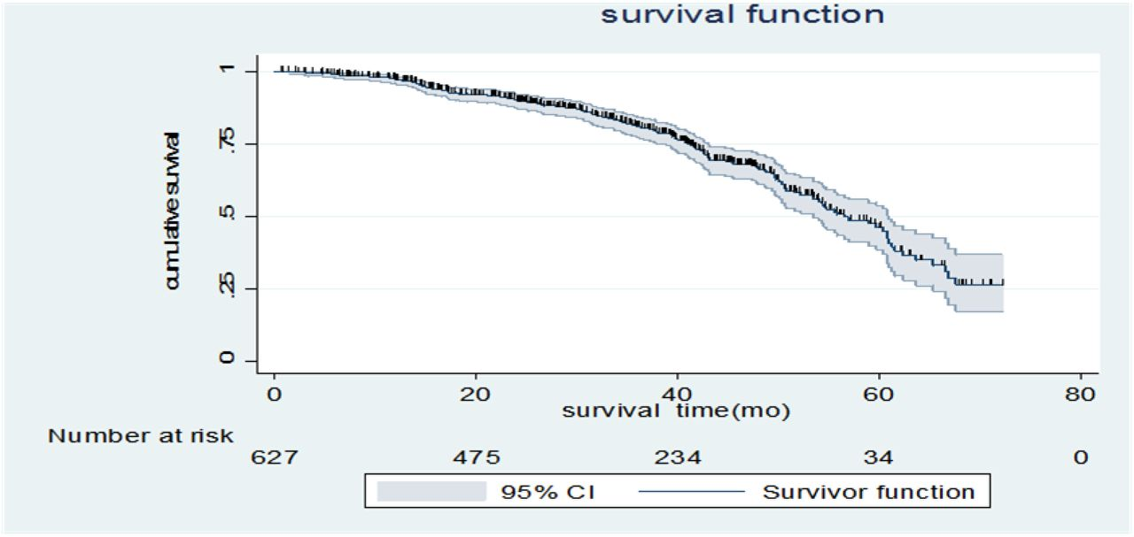 Survival status and predictors of mortality among Breast