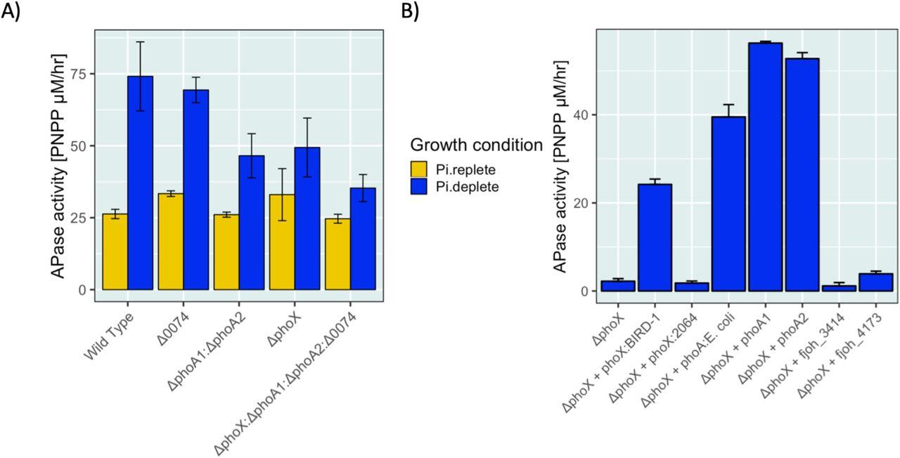 Novel mechanisms for phosphate acquisition in abundant