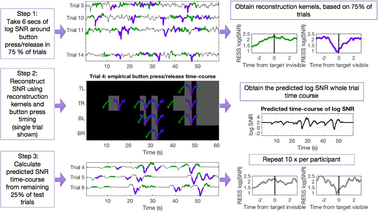 Measuring graded changes in consciousness through multi
