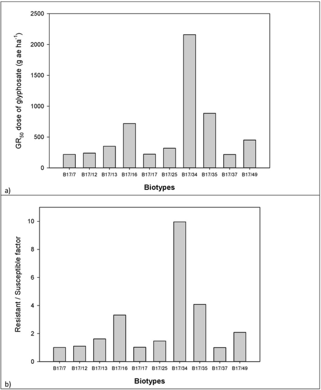 Growth Behavior And Glyphosate Resistance Level In 10 Biotypes Of