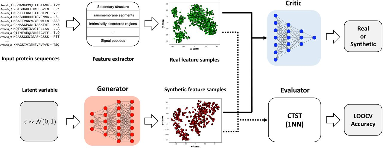 Improving protein function prediction with synthetic feature