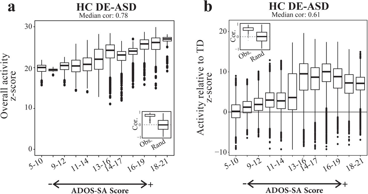 Asd Sa a perturbed gene network containing pi3k/akt, ras/erk, wnt/β