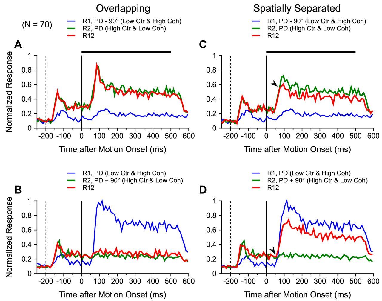 Spatial arrangement drastically changes the neural