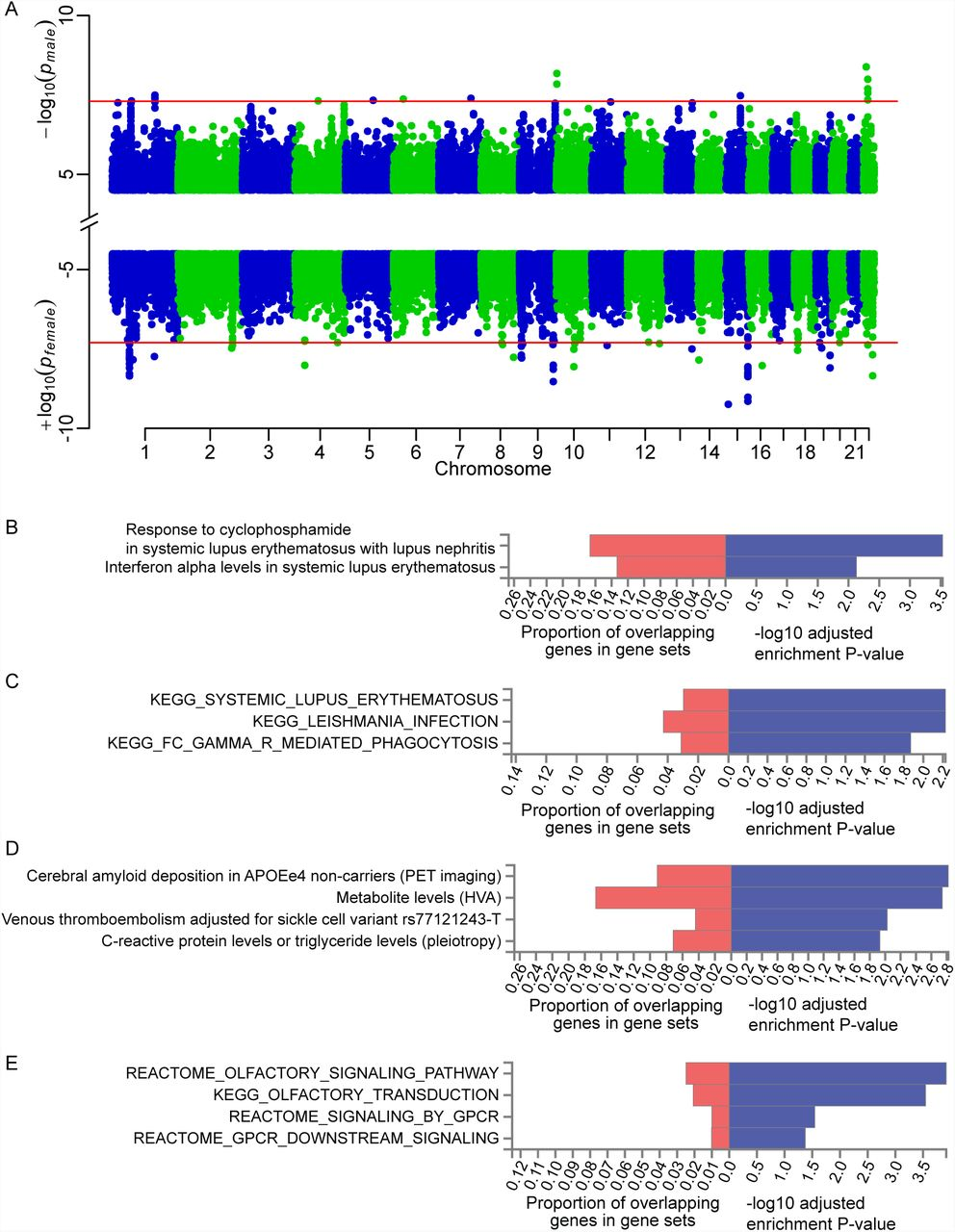 M GWAS For The Gut Microbiome In Chinese Adults Illuminates