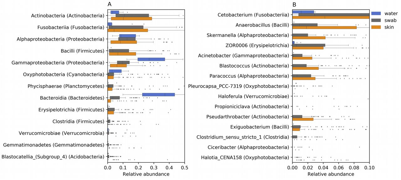 Dissecting the factors shaping fish skin microbiomes in a