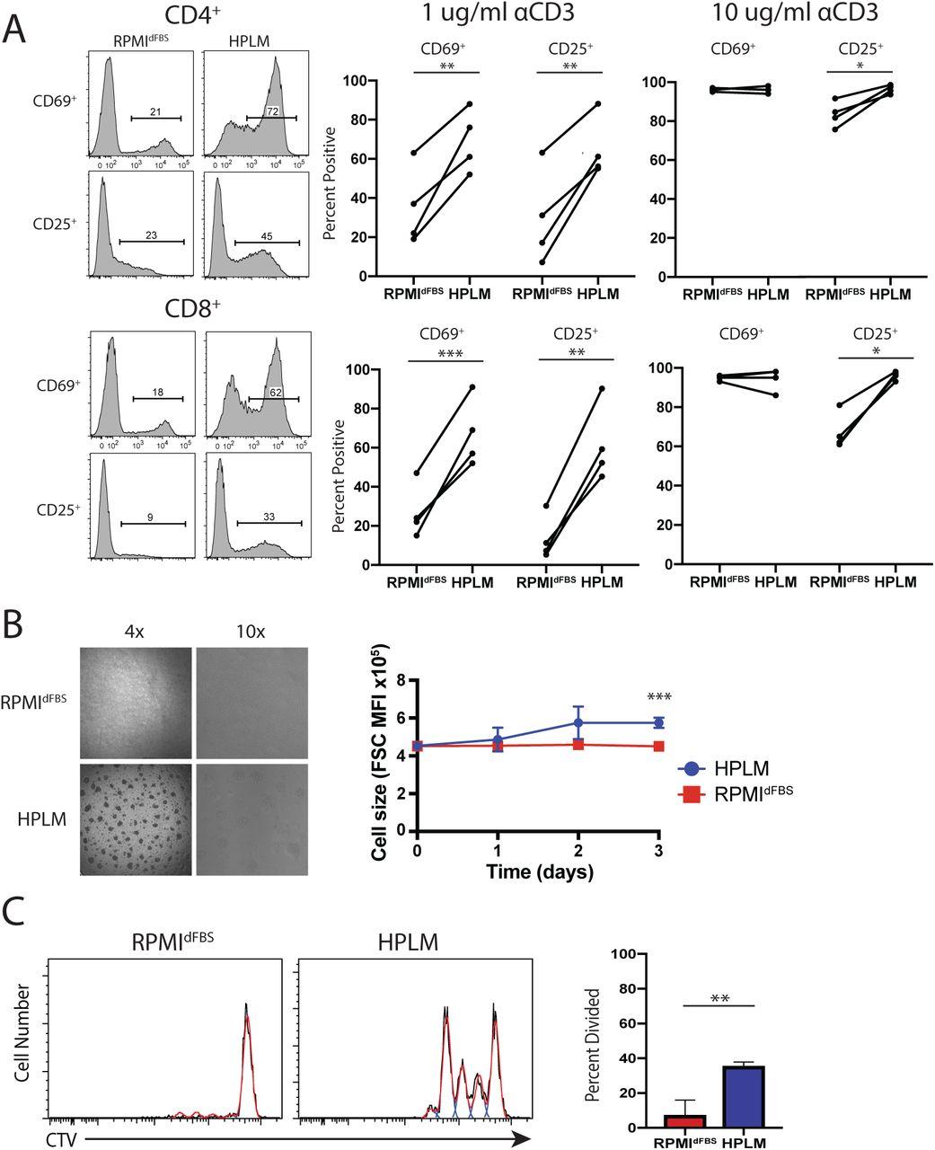 Human plasma-like medium improves T lymphocyte activation