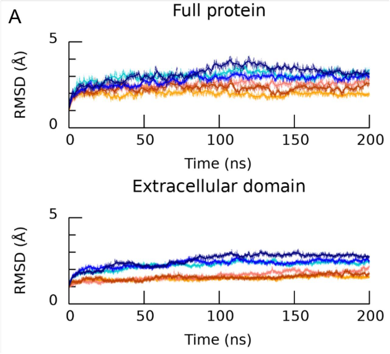 β11-12 linker isomerization governs Acid-sensing ion channel