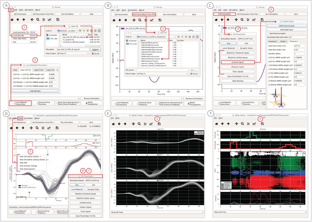 Human Neocortical Neurosolver (HNN): A new software tool for