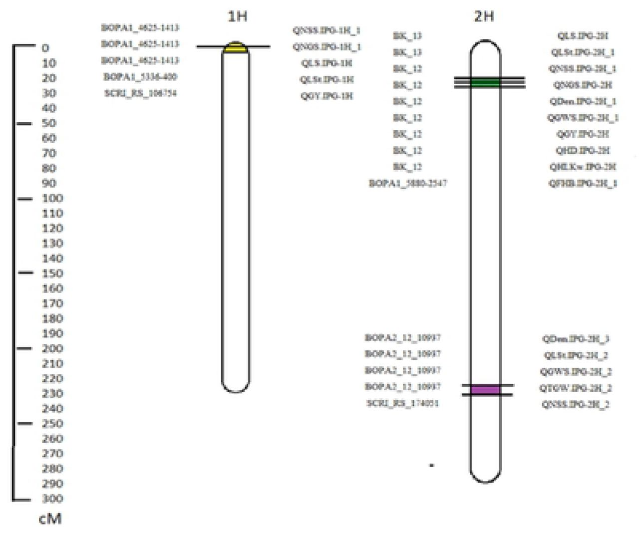 Mapping of Quantitative Trait Loci for Traits linked to