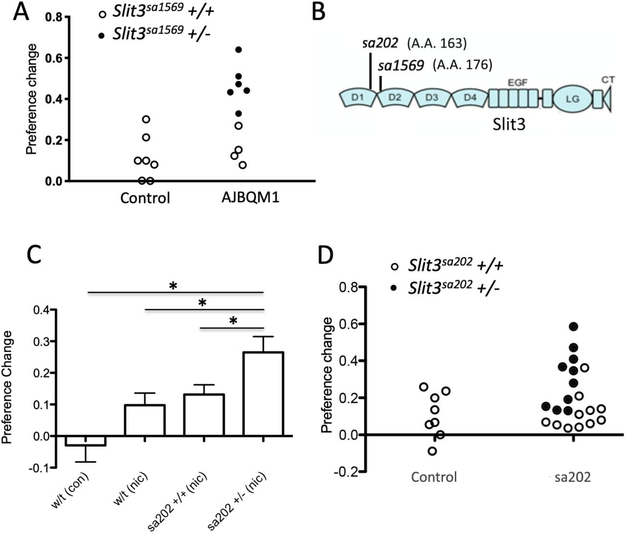 Identification of Slit3 as a locus affecting nicotine