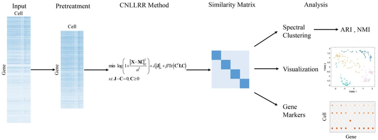 CNLLRR: A Novel Low-Rank Representation Method for Single