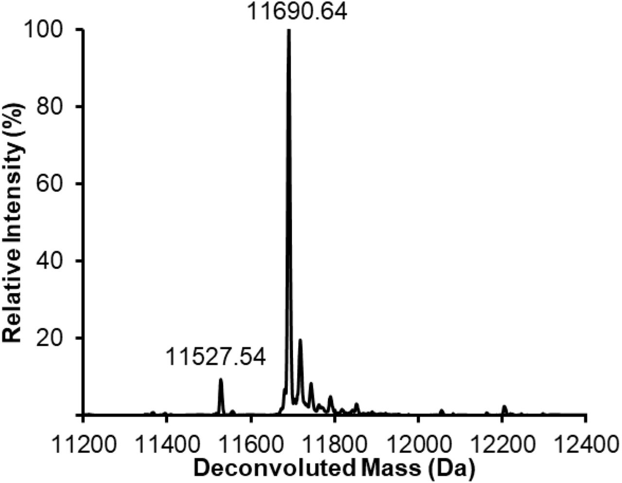 CjCST-I and HsSIAT1 exhibit greater activity when produced in oxidizing conditions. Deconvoluted intact protein MS spectra representative of of n=2 IVG reaction products containing 10 µM Im7-6, 0.4 µM ApNGT, 2 µM NmLgtB, 2.5 mM of UDP-Glc, UDP-Gal, and CMP-Sia as well as CjCST-I or HsSIAT1 made in CFPS conducted under oxidizing conditions, reducing conditions with supplemented the E. coli disulfide bond isomerase (DsbC), or standard reducing conditions (see Methods ). CFPS conditions are known to create a protein synthesis environment conducive to disulfide bond formation as previously described 24 . Lysates enriched with sialyltranferases by CFPS were added in equal volumes. Therefore, reducing reaction conditions contained 1.9 µM of CjCST-I or 3.8 µM of HsSIAT1 while oxidizing reaction conditions reactions contained 1.3 µM of CjCST-I and 0.7 µM of HsSIAT1 (detailed CFPS yield information shown in Supplementary Fig. 2 ). Aside from CFPS synthesis conditions for the CjCST-I and HsSIAT1, IVG reactions were performed identically without ensuring an oxidizing environment for glycosylation. Im7-6, ApNGT, and NmLgtB were produced with standard CFPS reaction conditions. Relative glycosylation efficiencies indicate that the oxidizing CFPS environment of CFPS allows for greater enzyme activities per unit of CFPS reaction volume and per µM of enzyme. This observation makes sense for HsSIAT1 which is normally active in the oxidizing environment of the human golgi and is known to contain disulfide bonds. Interestingly, an oxidizing synthesis environment also seems to benefit the activity of CjCST-I which does not contain disulfide bonds. However, the increased activity of CjCST-I cannot be explained by the general chaperone activity of DsbC.