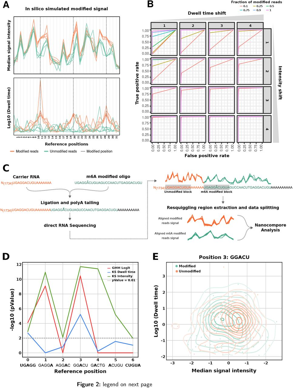 """In silico and in vitro validation of Nanocompore. A: Position plots showing the median intensity (top) and dwell time (bottom) for simulated data generated by Nanocompore SimReads. Dashed vertical lines indicate modified positions, where a clear signal shift between unmodified (green) and modified (orange) reads can be seen. B: ROC curves obtained with the GMM method on in silico generated data. The different subplots indicate varying amounts of intensity and dwell time shifts from the unmodified model (from 1 to 4 standard deviations), whereas the different colors indicate varying fractions of modified reads in the generated data (from 10% to 100%). All the comparisons are against a fully unmodified reference dataset. C: Diagram depicting the experimental and signal processing workflow used to run Nanocompore on a synthetic RNA carrying an <t>N6-methyladenosine</t> residue. Briefly, the RNA sequence was obtained by ligating an oligo carrying an <t>m6A</t> residue at position 6 to a longer unmodified carrier obtained by IVT of the firefly luciferase gene. The data obtained by DRS was parsed to extract the signal from the 2 short regions corresponding to a """"UGAGGACUGUA"""" with either an A or an m6A in the middle. D: Plot showing the Nanocompore p-values (-log 10 , y-axis. Tests: GMM+logit and KS) for the synthetically modified GGACU kmer and those surrounding it. E: Scatter plot showing the median signal intensity (x-axis) and scaled dwell time (log 10 , y-axis) for the synthetically modified kmer. The concentric lines show the kernel density estimates for the two samples."""