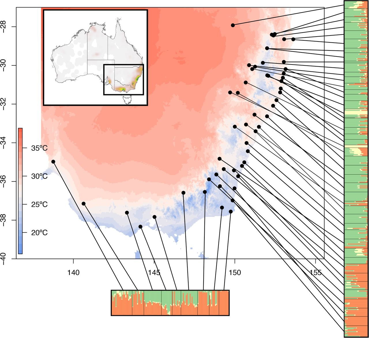 Spatial, climate, and ploidy factors drive genomic diversity ...
