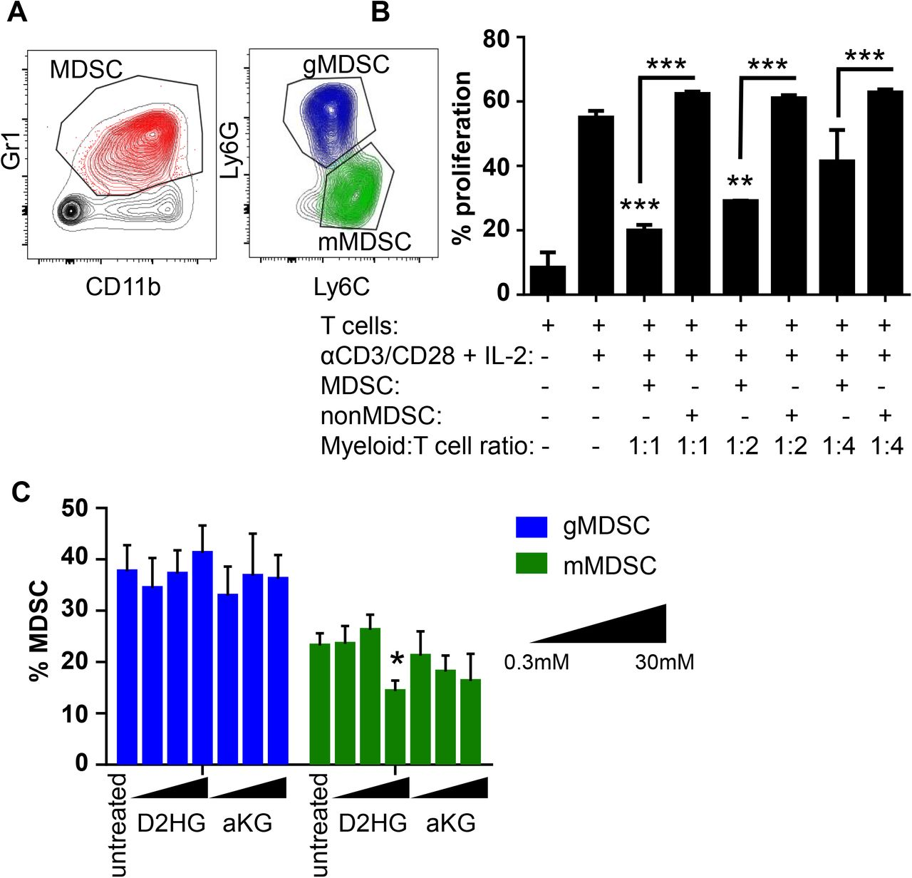 D2HG blocks mMDSC polarization in vitro. A) Representative flow plots demonstrating the gating strategy for in vitro generated mMDSCs and gMDSCs. B) Proliferation rate of T cells co-cultured with increasing concentrations of MDSCs or nonMDSCs. ** p