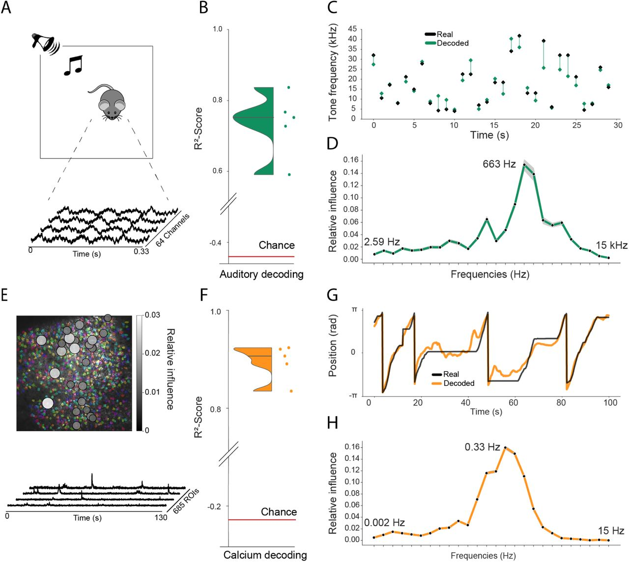 Model generalizes across recording techniques and brain regions (A) Overview of auditory recording. We recorded electrophysiological signals while the mouse is freely moving inside a small enclosure and is presented with pure tone stimuli ranging from 4kHz to 64kHz. (B) R 2 -score for decoding of frequency tone from auditory cortex (0.73 ± 0.08), chance level is indicated by the red line. (C) An example section for decoding of auditory tone frequencies from auditory electrophysiological recordings, real tone colored in black, decoded tone in green, the line between real and decoded indicates magnitude of error. (D) Influence plots for decoding of auditory tone stimuli, same method as used for CA1 recordings. (E) Calcium recordings from rat running on a linear track in VR. We record from 685 cells and use Suite2p to preprocess the raw images and extract calcium traces which we feed through the model to decode linear position. (F) R 2 -score for decoding of linear position from two-photon CA1 recordings (0.90 ± 0.03), chance level is indicated by the red line. (G) Example trajectory through the virtual linear track (linearized to [− π, π ] with real position (black) and decoded position (orange)). (H) Influence plots for decoding of position from two-photon calcium imaging. Note that the range of frequencies is between 0Hz and 15Hz as the sampling rate of the calcium traces is 30Hz.