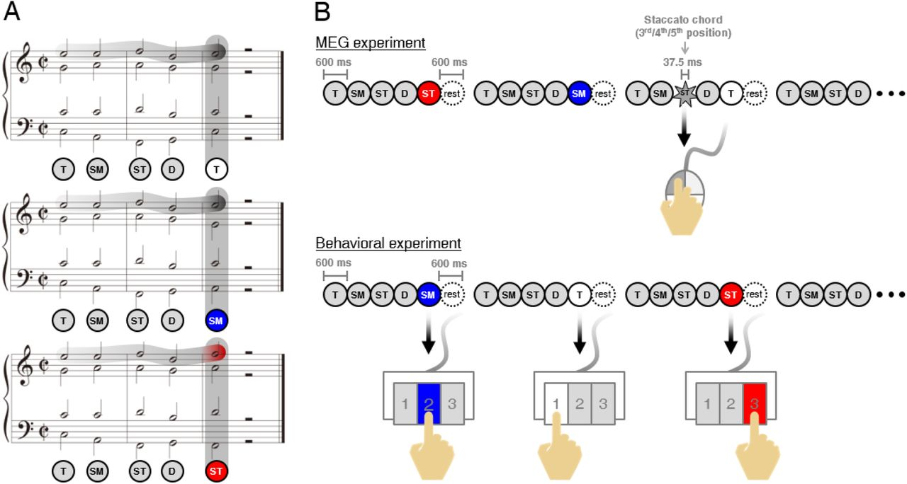 Dissociation of connectivity for syntactic irregularity and ...