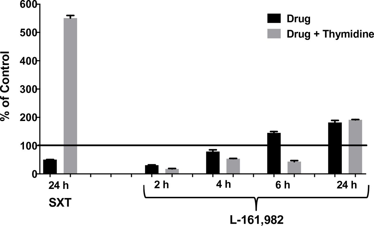 Growth inhibitory effects of L-161,982 are not rescued by exogenous thymidine. S. aureus strain NRS383 was grown in cation-adjusted <t>Mueller-Hinton</t> II broth alone (control), with 50 g/ml of L-161,982 or with 40 g/ml of SXT (positive control) ± 200 µg/ml of thymidine. Cultures were incubated at 37°C non-shaking and aliquots were removed at various time points and cultured for growth (CFU). Results are expressed as % of control at each time point. Mean values from two independent experiments are shown.