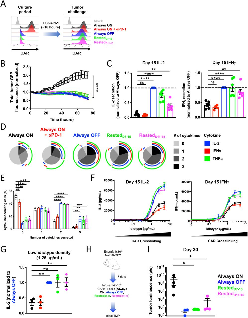 Transient rest reinvigorates exhausted CAR-T cells and improves anti-tumor function. A) CAR expression was normalized across all HA.28z.FKBP-expressing cells ( Figure 4A ) by adding shield-1 to cultures approximately 16 hours prior to in vitro tumor challenge. B) D15 incucyte assay shows that transient rest and α PD-1 enhances cytotoxicity in response to 143B-GL osteosarcoma (1:8 E:T, normalized to t=0) compared to exhausted Always ON controls. Error bars represent mean ± SD of 3 triplicate wells from one representative donor (n=3 individual donors). C) D15 co-culture assay with Nalm6-GD2 leukemia demonstrates that transient rest, but not α PD-1, augments IL-2 and IFN γ secretion. Error bars represent mean ± SEM of 4-6 individual donors. D-E) Intracellular cytokine staining and flow cytometry analyses of CD8+ CAR+ T cells demonstrate that rest reduces the frequency of non-responsive cells and increases the frequency of polyfunctional cells. SPICE analysis from 1 representative donor was conducted in (D). Error bars in (E) represent mean ± SEM of 3 individual donors. F-G) CAR-T cells were crosslinked with immobilized 1A7 anti-CAR idiotype antibody for 24 hours. (F) Non-linear dose-response curves demonstrate that T cell rest, but not PD-1 blockade, augments IL-2 and IFN γ secretion in response to both low and high idiotype densities. Error bars represent mean ± SD of 3 triplicate wells from one representative donor (n=3 individual donors). (G) IL-2 secretion in response to low density (1.25 μ g/mL) anti-CAR idiotype was normalized to secretion levels from Always OFF cells. Error bars represent mean ± SEM of 3 individual donors. H-I) 1×10 6 Nalm6-GD2 leukemia cells were engrafted in mice on day 0 and 1-2×10 6 HA.28 ζ .ecDHFR CAR-T cells expanded for 15 days in vitro (as depicted in Figure 4A ) and were infused IV on day 7 post-engraftment. Mice were dosed with 200mg/kg TMP 6 days/week. (I) Bioluminescent imaging on day 30 post-engraftment demonstrates augmented contro