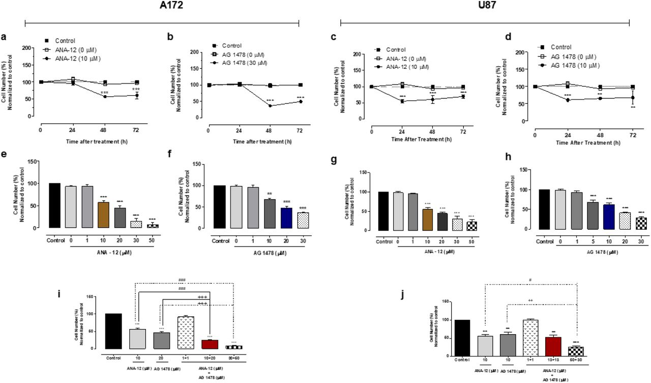 Inhibition of TrkB and EGFR alone or in combination reduces human GBM cell viability. Time course analysis of cell viability, by trypan blue cell counting, were performed after 24, 48 and 72 h of exposure to ANA-12 or AG 1478 exposure in A172 (A, B) and U87MG (C, D) cells. Dose-response curves were evaluated by trypan blue cell counting after treatment with increasing concentrations of ANA-12 (1-50μM) or AG 1478 (1-30 μM) for 48 h in A172 cells (E, F) and 24 h in U87MG cells (G, H). The drug vehicles (DMSO or EtOH) served as controls. Dose-response curves after combined treatment with ANA-12 and AG 1478 were evaluated after 48 h of drug exposure in A172 cells (I) and 24 h in U87MG cells (J). Data are expressed by mean ± SEM and represent three independent experiments * p