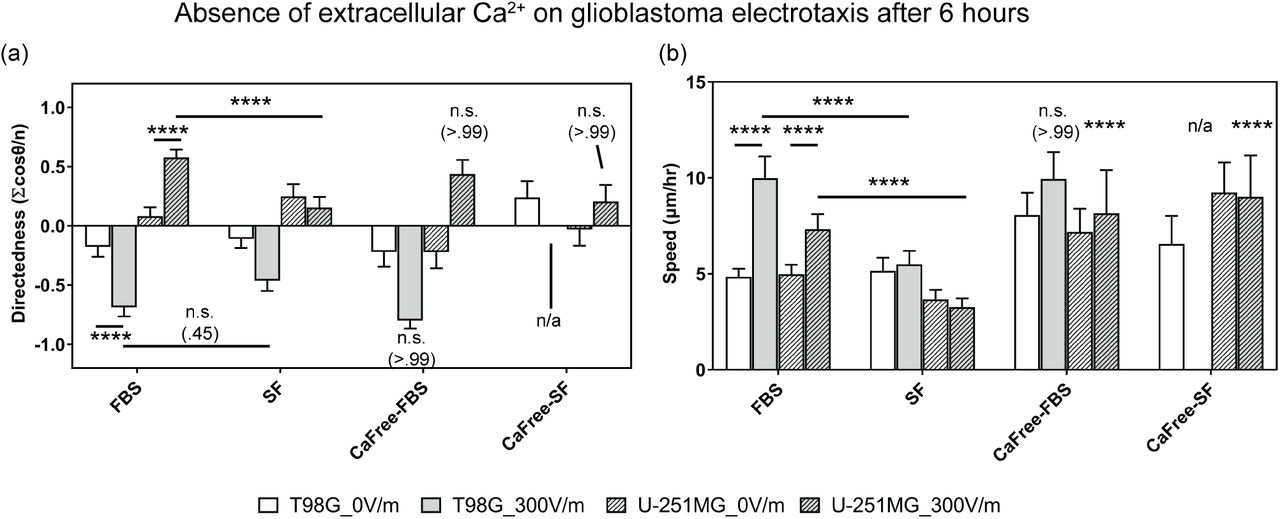 The electrotaxis of T98G U-251MG glioblastoma cells in dependence of the extracellular serum and calcium by varying the medium recipe. (a) The electrotaxis directedness; (b) The electrotaxis speed; n.s. indicates not significant; **** indicate P