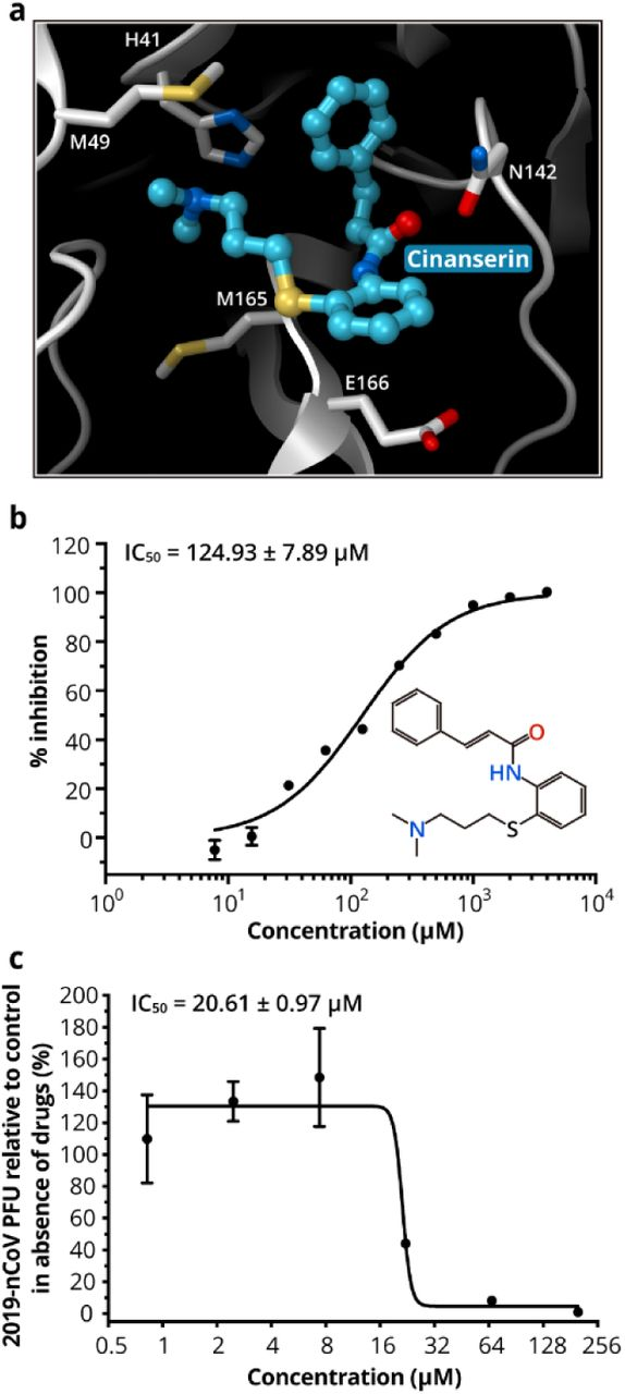 Structure Based Drug Design Virtual Screening And High Throughput Screening Rapidly Identify Antiviral Leads Targeting Covid 19 Biorxiv