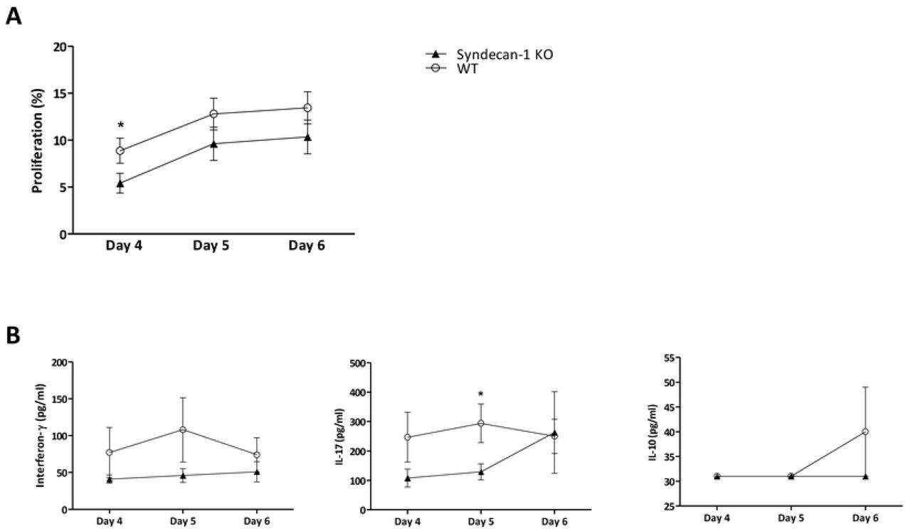 Proliferation and cytokine production are reduced in <t>Sdc-1</t> deficient splenocytes upon stimulation with ConA. Proliferation of WT and Sdc-1 deficient splenocytes was determined in the presence of 0.1 - 0.25 µg/ml ConA as analyzed by CFSE dilution using flow cytometry (A). Interferon-γ, IL-17 and IL-10 production by WT and Sdc-1 deficient splenocytes was determined in the presence of 0.25 µg/ml ConA (B), as determined by ELISA. Proliferation and cytokine levels are expressed as means and standard error of means of 10 independent experiments. * p