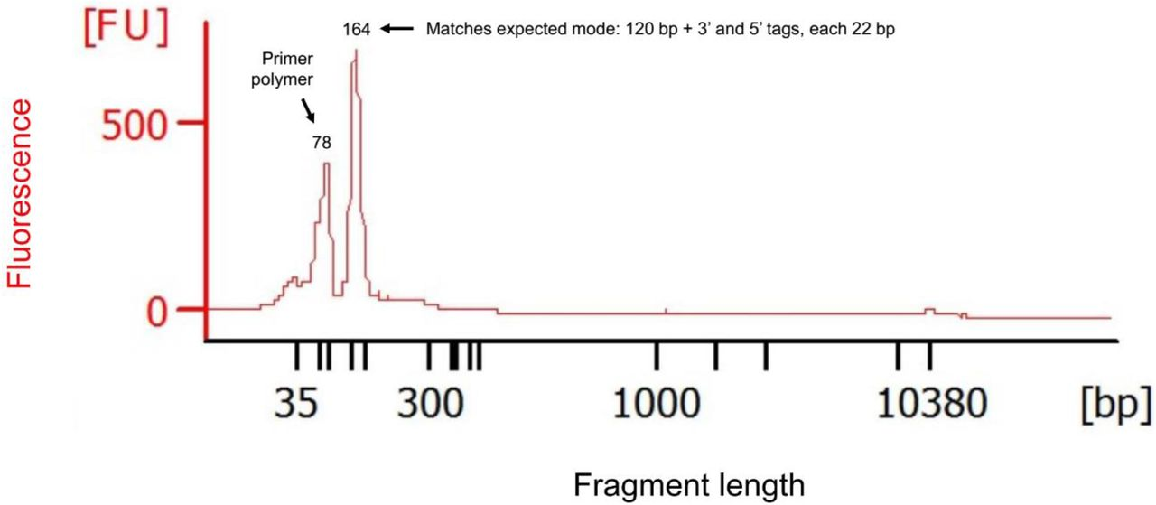 First-round (unbarcoded) PCR product size composition measurement using microfluidic electrophoresis. The figure plots fragment sizes (calculated based on migration times relative to those of standards) and fluorescence intensity (FU) of first-round PCR products (see cycling conditions in Methods or Supplementary Fig. 2 legend) measured with the Agilent <t>Bioanalyzer</t> 2100 System. The first peak represents primer polymerization that is removed in subsequent gel excision/re-solubilization steps. The second peak matches expectations for the multi-target GLST product (164 – 204 bp). Special thanks to Craig Lapsley at the Wellcome Centre for Molecular Parasitology in Glasgow for generating this data.