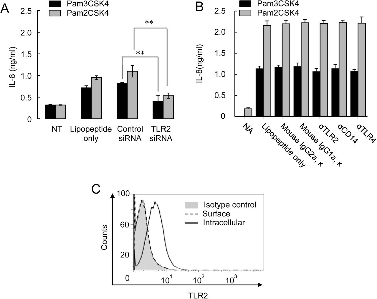 Lipopeptides induce IL-8 expression via intracellular TLR2 in A549 cells. (A) TLR2 knockdown effect on IL-8 production induced by lipopeptides in A549 cells. siRNA-transfected cells were treated with either pam2CSK4 or pam3CSK4 for additional 24 h. (B) Blocking antibodies for TLR2, TLR4, and CD14 had no effect on lipopeptide-induced IL-8 production. Cells were treated with blocking antibodies for 1 h prior to the lipopeptide stimulation for 24 h. Mouse IgG2aκ (for TLR2 and TLR4 antibodies) and IgG1aκ (for CD14 antibody) were used as isotype controls. Bars indicate means ± S.D. (n=3). (C) Intracellular localization of TLR2 in A549 cells was determined by immunostaining and FACS. Grey areas indicate isotype control. Dotted lines indicate fixed cells for surface staining and closed lines indicate permeabilized cells for intracellular staining of TLR.