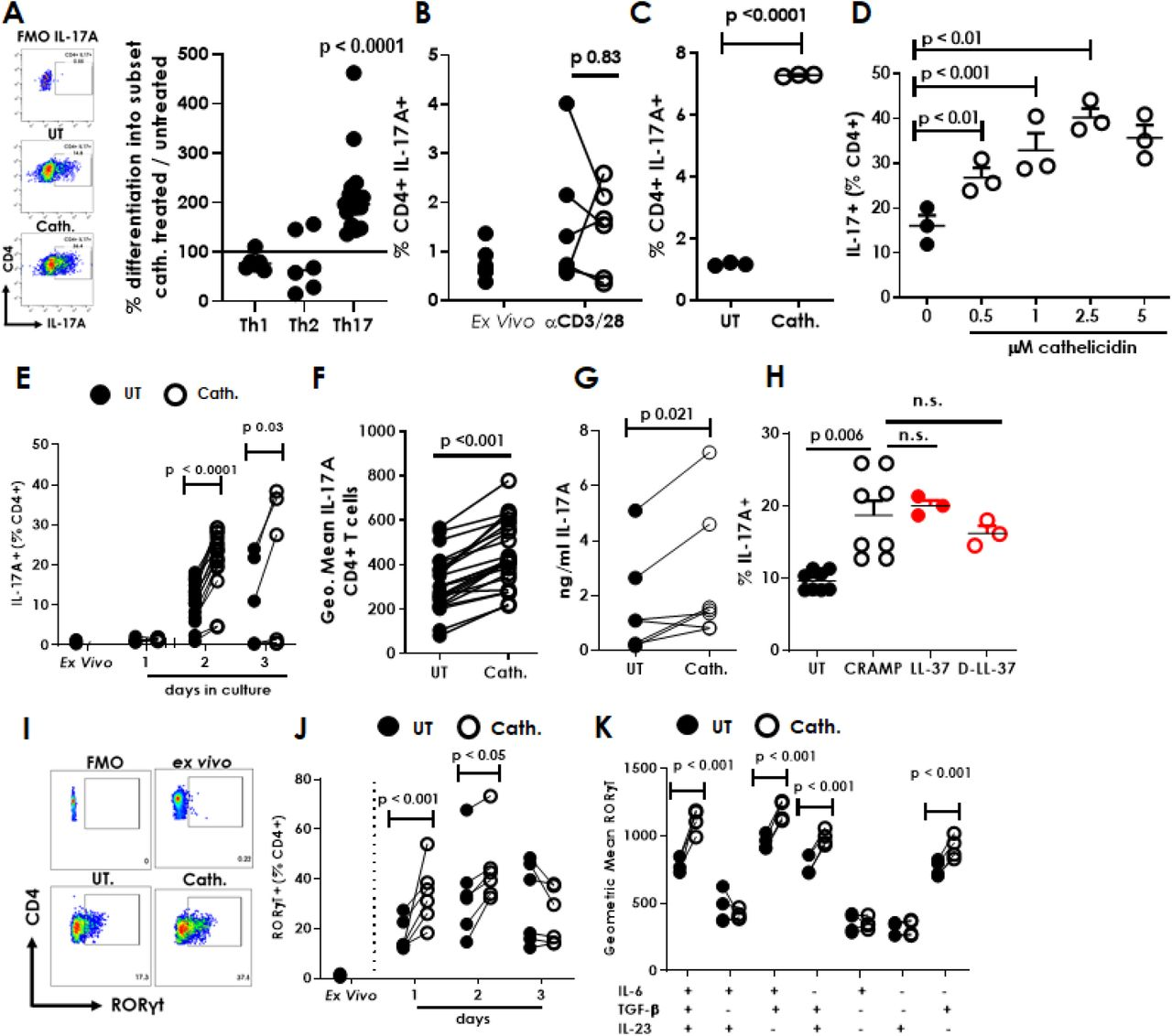 The antimicrobial peptide cathelicidin induces IL-17 production by CD4 + T cells. Splenocytes isolated from C57BL/6J mice were cultured in Th1-driving conditions for 4 days, Th2-driving for 4 days or Th17-driving for 2 days in the presence or absence of 2.5μM murine cathelicidin. (A,B) Expression of <t>cytokines</t> was determined by intracellular flow cytometry. (C) sorted CD4 + T cells were cultured alone in Th17-driving conditions with 2.5μM cathelicidin. (D) Production of IL-17A following increasing doses of cathelicidin (at 48 hours) and (E) production over increasing days in culture was assessed. (F) Geometric mean of IL-17A expression was also assessed on day 2 of culture. (G) After 3 days in culture the culture medium was collected and ELISA used to quantify IL-17A protein. (H) Alternative cathelicidins were used – human LL-37 and the D-enantiomer D-LL37. (I) Representative flow cytometry plots showing RORγt expression - (J) RORγt expression increased over time following cathelicidin exposure and (K) in the presence of TGF-β. Data shown are individual mice used in separate experiments, with line at median. Statistical significance was determined using a two-way repeated measures ANOVA with a Bonferroni multiple comparison post-test (E, J), a two-way ANOVA with Bonferroni correction (K), a paired t-test (B, C, F, G) or a one-way ANOVA with a Dunnett's multiple comparison post-test (D. H).
