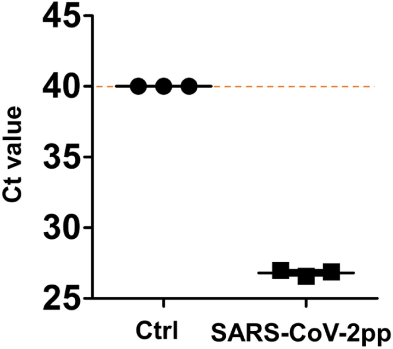 Graphs showing the Ct values of viral pol gene detected by qPCR in the human Airway Chips infected with CoV-2pp. Pseudoparticles without the spike protein of SARS-CoV-2 were used as control (Ctrl).