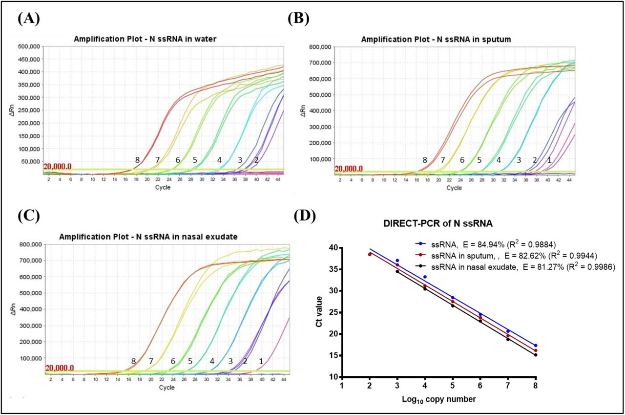 Amplification plot of SARS-CoV-2 N gene ssRNA control in (A) water, (B) spiked in sputum, (C) spiked in nasal exudate conducted in the same <t>thermocycler</t> run. Numbers indicated the log 10 copy number of the template present. No amplification was observed in the NTC. (D) Comparison of DIRECT-PCR assay amplification of SARS-CoV-2 N gene ssRNA control (blue line), N gene spiked in sputum (red line) and N gene spiked in nasal exudate (black line). Templates were ten-fold diluted in 8 orders of magnitude. 2 μL of template was used in 20 μL of PCR mastermix on the <t>benchtop</t> thermocycler. The amplification efficiency (E) was determined by plotting of mean C q values against log 10 copy number calculated using theoretical molarity of templates.