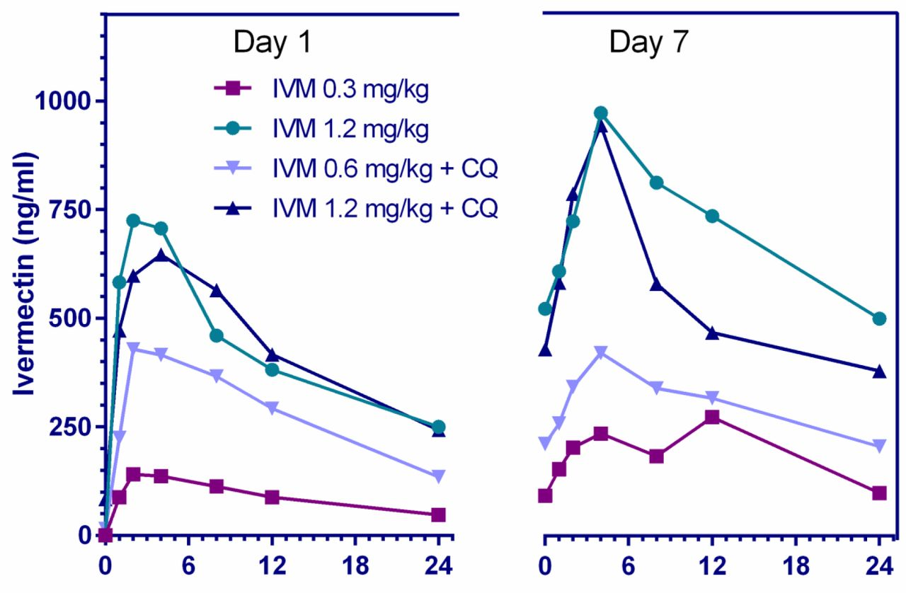 Mean plasma concentration-time profiles of ivermectin 24 hours after the first and seventh dose when administered ivermectin at 0.3, 0.6, and 1.2 mg/kg with and without chloroquine (10 mg/kg)
