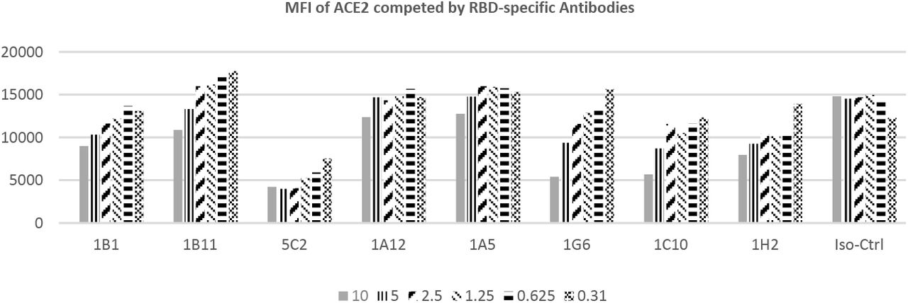 MFI change of ACE2 binding to ID8 cells in the presence of serial diluted RBD-antibodies. 8 Covid-19 spike positive antibody binders (1B1, 1B11, 5C2, 1A12, 1A5, 1G6, 1C10 and 1H2) and one isotype negative control antibody (iso-ctrl in the figure) were mixed with ID8 cells at serial diluted concentrations (10 μg/ml down to 0.31 μg/ml, 2 times dilution) before adding of human ACE2-mFc, which has strong interaction with ID8. MFIs (shown in vertical axis) of individual antibody/concentrations cell group (horizonal axis) were complied.