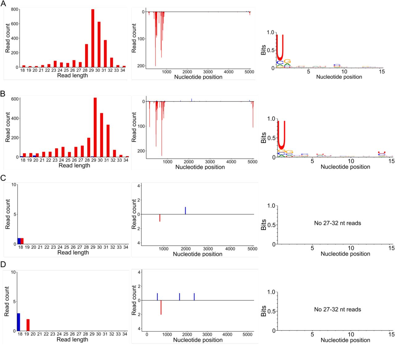 RT-PCR products produced using primers flanking the site into which recombinant DcDV sequence was inserted in CrPV-DcDV (primers 15 and 16). RNA from all biological replicates from each day shown in Fig. 4.6a (A) or Fig. 4.7a (B) was pooled and used as templates for RT-PCR. RNA from CRF-CA D. citri was used as a negative control. In vitro transcribed wild-type CrPV or CrPV-DcDV RNA was used as a positive control. DPI = days post injection. DPF = days post feeding.