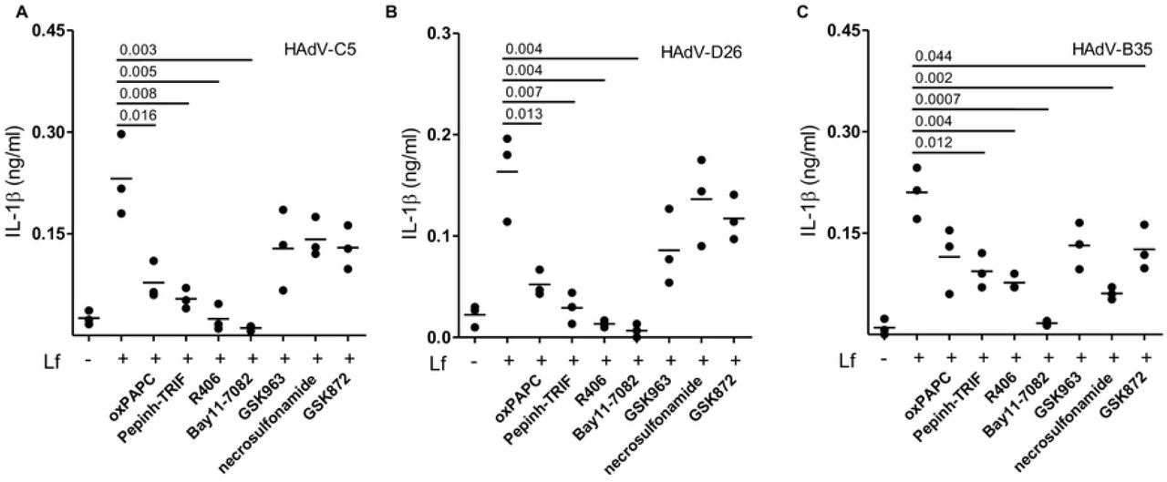 Pharmacological inhibition organized by HAdV type DCs were treated for 1 h pre-infection with TLR4 inhibitors oxPAPC, Pepinh-TRIF, Syk inhibitor R406, NLRP3 inhibitor Bay11-7082, RIPK1 inhibitor GSK963 and RIPK3 inhibitors necrosulfonamide and GSK872 (n ≥ 3). Cells were infected with A) HAdV-C5-lactoferrin, B) HAdV-D26-lactoferrin or C) HAdV-B35-lactoferrin complexes and IL-1β release was analyzed 24 h postinfection (n ≥ 3). Statistical analyses by two-tailed Mann-Whitney test.