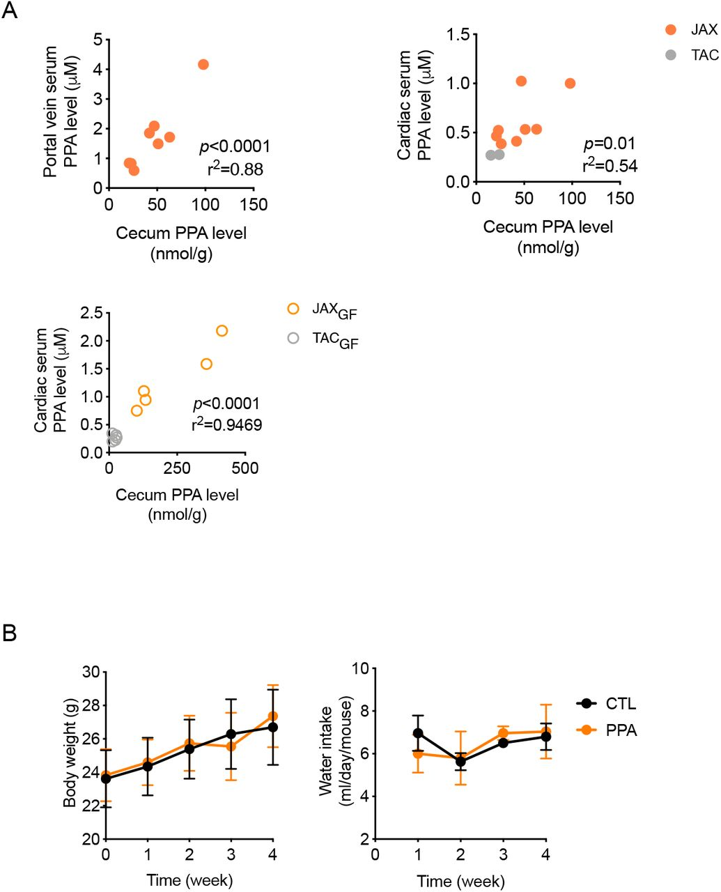 A. TAC mice were fed with PPA (0.4% in drinking water) or regular water (CTL) for 4 weeks. A group of mice were sacrificed after overnight fasting, and liver RNAs were isolated. The other group of mice received APAP (300 mg/kg intraperitoneally) after overnight fasting. The mice were sacrificed after 6 h, followed by liver RNA isolation. Transcriptome profiles were obtained by RNA-sequencing TAC mice. B. JAX or TAC mice were sacrificed after overnight fasting, followed by isolation of mitochondria, cytosol (Cyt) and microsomes. Mitochondrial and cytosolic proteins (10 μg/well) as well as microsomal proteins (1, 5, or 10 μg/well) were analyzed by western blot using antibodies detecting VDAC (voltage-dependent anion channel; mitochondria marker), α-tubulin (cytosol marker), and calnexin (microsome marker). C. Basal hepatic Cyp2e1 mRNA levels in PPA-supplemented mice were measured by qRT-PCR. D. Gut-microbiota transplanted mice were sacrificed after overnight fasting, and microsomal CYP2E1 and CYP1A2 levels were measured by western blot (left). APAP bioactivation levels (right) were determined by measuring APAP-GSH formation rate in the hepatic microsomes. E. Hepatic CYP2E1 activity levels were determined by measuring the rate of chlorzoxazone to 6-hydroxychlorzoxazone conversion rate in the hepatic microsomes. F. Mouse hepatic microsomes were incubated with chlorzoxazone (100 μM) in the presence of PPA (1 mM) or p -nitrophenol (PNP; 1 mM; a known CYP2E1 substrate as a competitive inhibitor) for 30 min, and the extent of 6-hydroxychlorzoxazone production was compared. All data are shown as mean ± S.D.