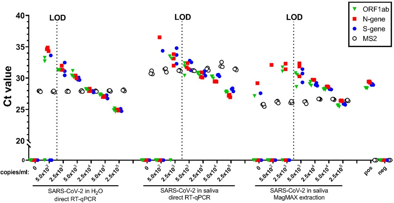 LOD of direct saliva-to-RT-qPCR SARS-CoV-2 detection using CDC-approved primers and probes. Heat-inactivated (a, b, c) and γ-irradiated (d, e, f) SARS-CoV-2 was spiked into fresh human saliva (SARS-CoV-2 negative) in 1X Tris-Borate-EDTA buffer (TBE) at 1.0×10 2 , 5.0×10 2 , 1.0×10 3 , 2.5×10 3 , 5.0×10 3 , 1.0×10 4 , and 5.0×10 4 viral copies/mL. Samples were incubated at 95°C for 30 min. Virus-spiked saliva samples, a positive control (pos; SARS-CoV-2 positive control, 5.0×10 3 copies/mL) and a negative control (neg; water) were directly analyzed by RT-qPCR, in triplicate, for SARS-CoV-2 N1 gene (a, d) and N2 gene (b, e), and the human RP gene (c, f). Undetermined Ct values are plotted at 0.