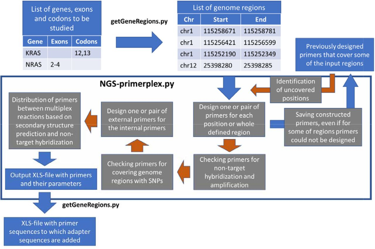 Ngs Primerplex High Throughput Primer Design For Multiplex Polymerase Chain Reactions Biorxiv