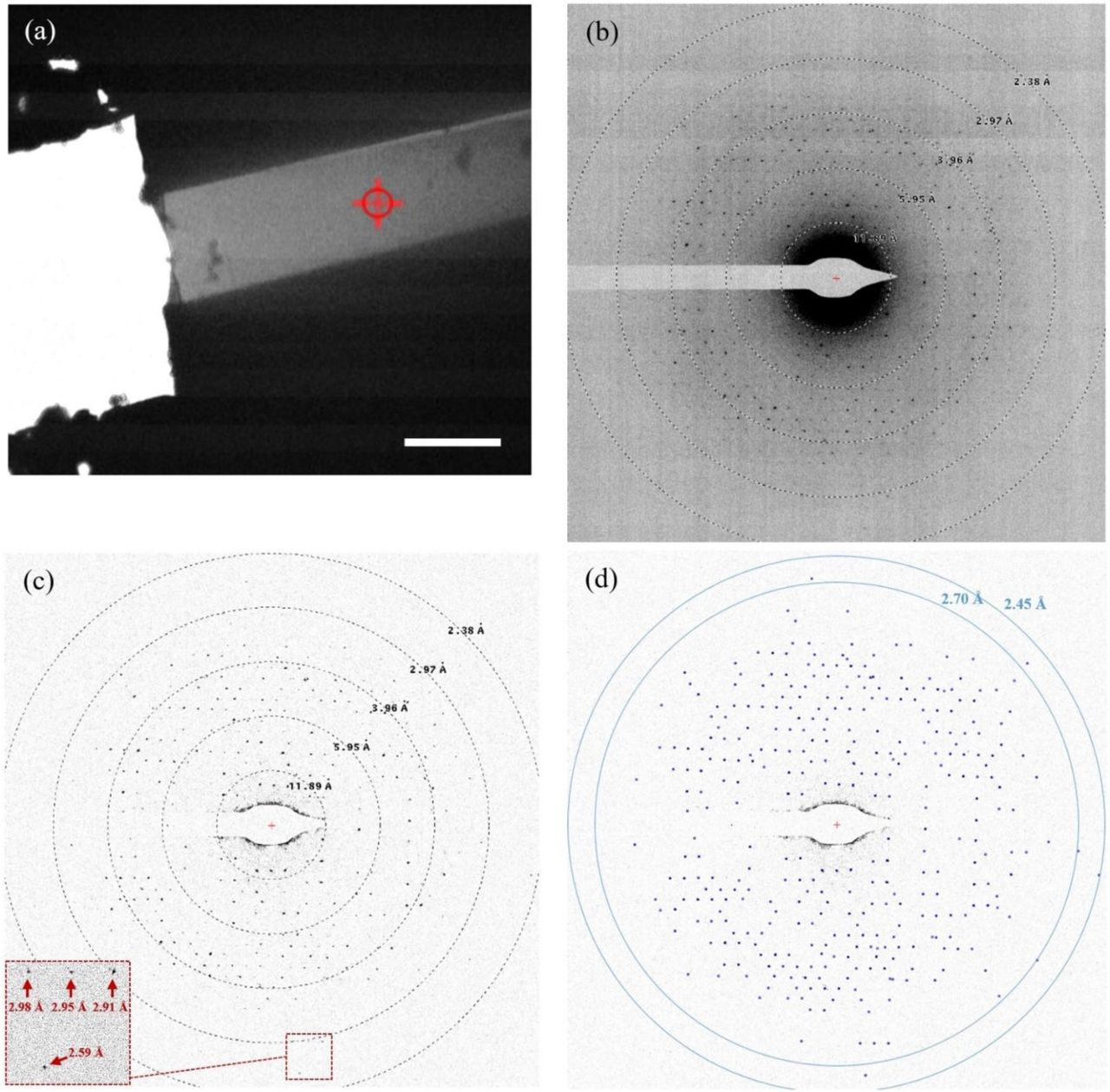 Electron diffraction experiment on a 210 nm thick lamella of bacteriorhodopsin, using a 200-kV cryo-TEM microscope. (a) TEM micrograph of the FIB-machined lamella of the BR crystal. Electron diffraction signal was collected from a 1.4-µm area of the lamella, indicated by a red circle with a cross. The scale bar on (a) corresponds to 5 µm. (b) The 200-kV electron diffraction pattern obtained from the area indicated in (a). (c) The electron diffraction image is corrected by subtraction of local moving-average background, calculated with the Adxv program ( Adxv, 2013 ). The inset shows a close up of the electron diffraction pattern. (d) Diffraction peaks were automatically picked up by the Adxv software, and the diffraction peaks in the resolution shell of 2.7 Å - 2.45 Å had a mean signal-to-noise ratio