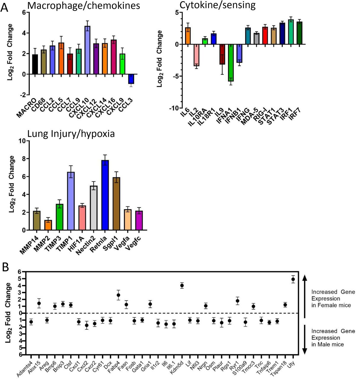 Transcriptional activation in SARS-CoV-2 infected lungs. Transcriptional activation in lung homogenates from infected K18-hACE2 (male and female) and C57BL/6 (female) mice were examined by NanoString. A. Log 2 fold changes in gene expression levels of selected genes categorized by group versus infected C57BL/6 mice were graphed with SD. All graphed transcripts had a p value of