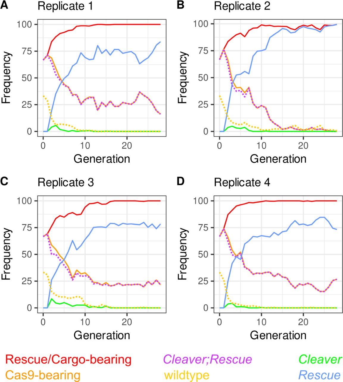 Drive outcomes with all the scored genotypes. Legend on top of panels with Rescue /Cargo-bearing in red, Cas9-bearing in orange, Cleaver/Rescue in violet, Cleaver -only in green, Rescue -only in blue, and WT in yellow. (A-D) Replicates A-D. WT and Cleaver;Rescue in dotted lines for visibility.