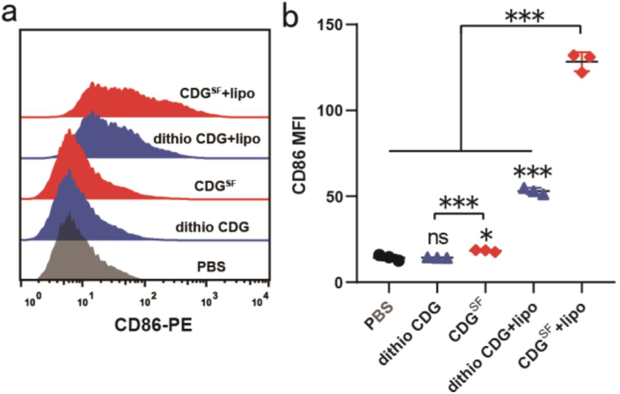 Immune analysis of CDG SF as an adjuvant for SARS-CoV-2 vaccine. (a) Immunization scheme of the vaccine group: blank, S, S+Alum and S+CDG SF . (b) IFN-γ ELISPOT test of splenocytes and (c) spleen weight data from immunized mice. ns: no significant difference, *p