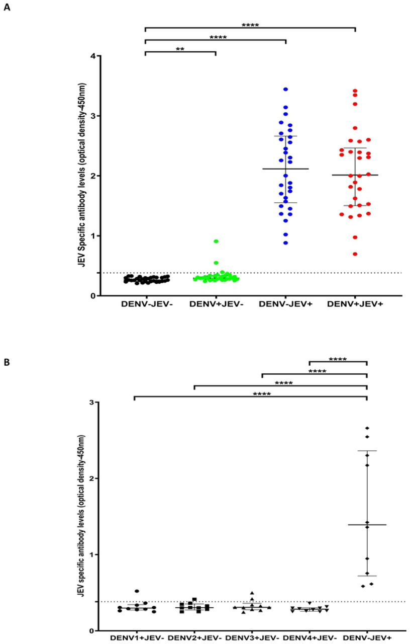 IgG antibody levels for a JEV-specific peptide pool in individuals with varied DENV and JEV seropositivity. Antibody responses were measured by ELISA to the JEV pool of peptides (P6, P7, P8, P9, P10, P12 and P13) in (A) those who were both JEV and DENV seropositive (JEV + DEV - , n=30), JEV seropositive but seronegative for DENV (JEV + DEV - , n=30), DENV seropositive but JEV seronegative (JEV - DENV + , n=30) or seronegative for both (JEV - DENV - , n=30). (B) Who were seronegative for JEV and previously had primary DENV infection due to either DENV1 (n=10), DENV2 (n=10), DENV3 (n=10) or DENV4 (n=10) and in individuals who were immunized for JEV but DENV seronegative (DENV - JEV + , n=10) Error bars indicate the median and the interquartile range. The horizontal dotted line represents the cut-off value of 0.382, which was considered as the mean, ±3SD of the optical density of antibody levels in JEV - and DENV - seronegative individuals. *P