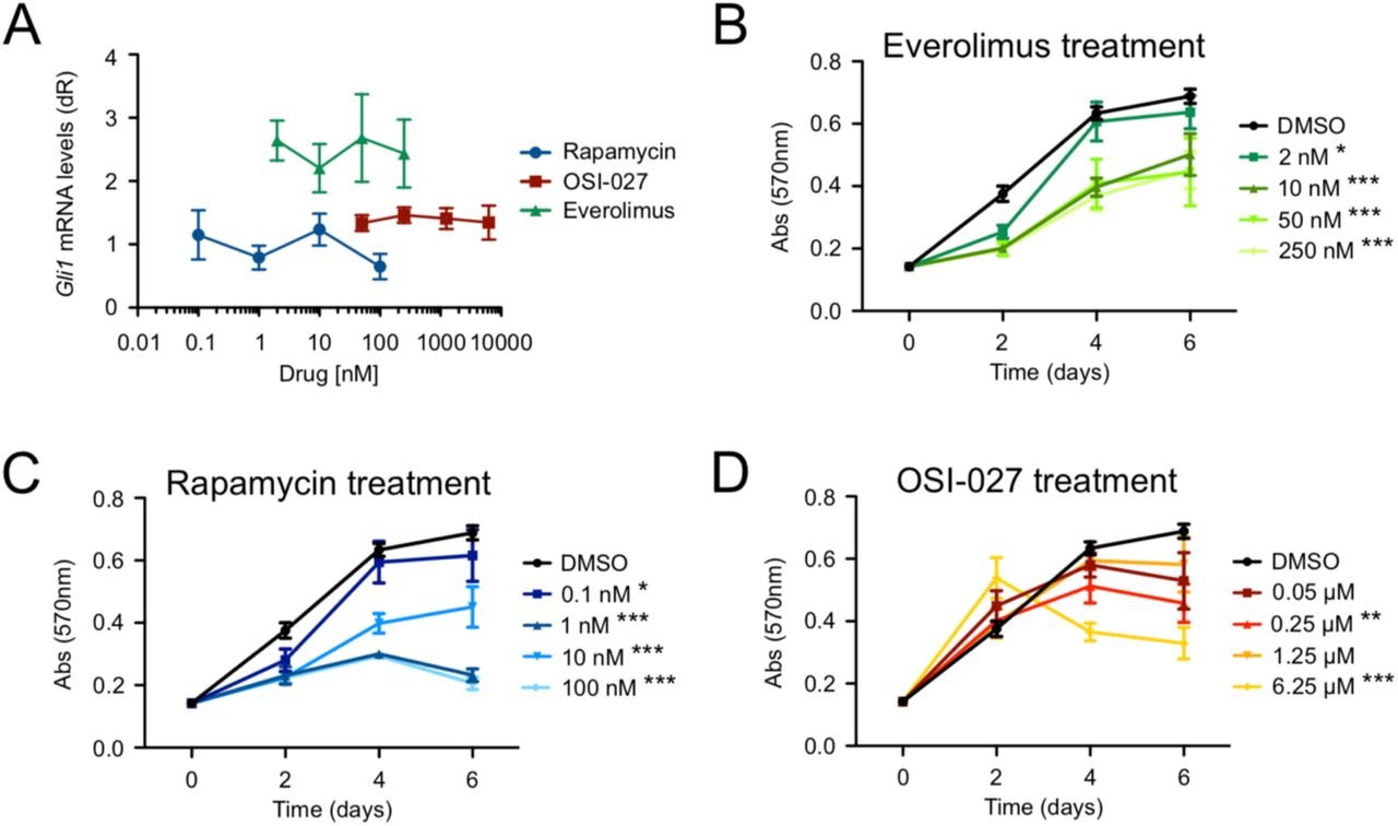 mTor inhibition suppresses BCC cell growth but not HH signaling. A) Gli1 mRNA levels of ASZ001 cells treated with DMSO or varying concentrations of Rapamycin, OSI-027, or Everolimus (n = 3 experiments). dR, delta reporter signal normalized to passive reference dye. B-D) MTT assay of ASZ001 cells treated with B) Everolimus, C) Rapamycin, or D) OSI-027 (n = 3 experiments). Abs, absorbance. Error bars represent SEM. Significance was determined by two-way ANOVA test. *, p