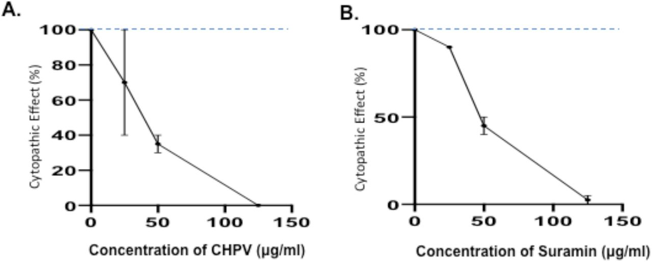 Inhibitory effect of CHPV and Suramin on SARS-CoV-2 infection-induced cytopathic effects. Vero cells were infected with a wild type SARS-CoV-2 virus (hCoV-19/Canada/ON-VIDO-01/2020) in the presence or absence of different concentrations of CHPV and Suramin. After 72 hrs pi., the SARS-CoV-2 infection-induced cytopathic effects in Vero cells were monitored. Error bars represent variation between triplicate samples, and the data of (A) and (B) are representative of results obtained in two independent experiments.