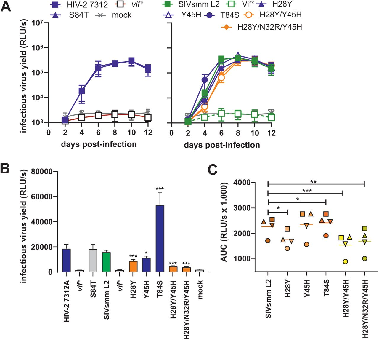 Replication of Vif mutant HIV-2 and SIVsmm IMCs in human CD4+ T cells. (A) Mean infectious virus yields measured by triplicate infection of TZM-bl reporter cells with normalized volumes of the supernatants from infected CD4+ T cell cultures derived from four different PBMC donors. ( B ) Infectious virus yields at 4 days post-infection. ( C ) Cumulative infectious virus production in PBMCs infected with the indicated SIVsmm constructs. Shown are AUCs for the replication kinetics as indicated in panel A but calculated for each of the four donors (indicated by a different symbol) individually. *, P