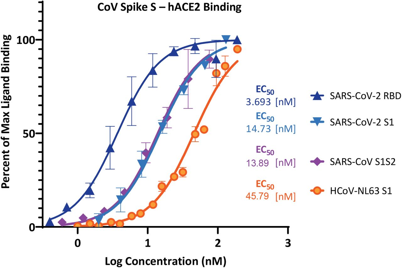 Concentration-response curves for binding of CoV spike protein domains to human ACE2 in cell-free ELISA-type assays. Binding curves and corresponding EC 50 s are shown for SARS-CoV-2 (RBD and S1), SARS-CoV (S1 S2), and <t>HCoV-NL63</t> (S1). They were obtained using Fc-conjugated hACE2 coated on the plate and His-tagged S1, S1S2, or RBD added in increasing amounts as shown with the amount bound detected using an anti-His–HRP conjugate (mean ± SD for two experiments in duplicates).