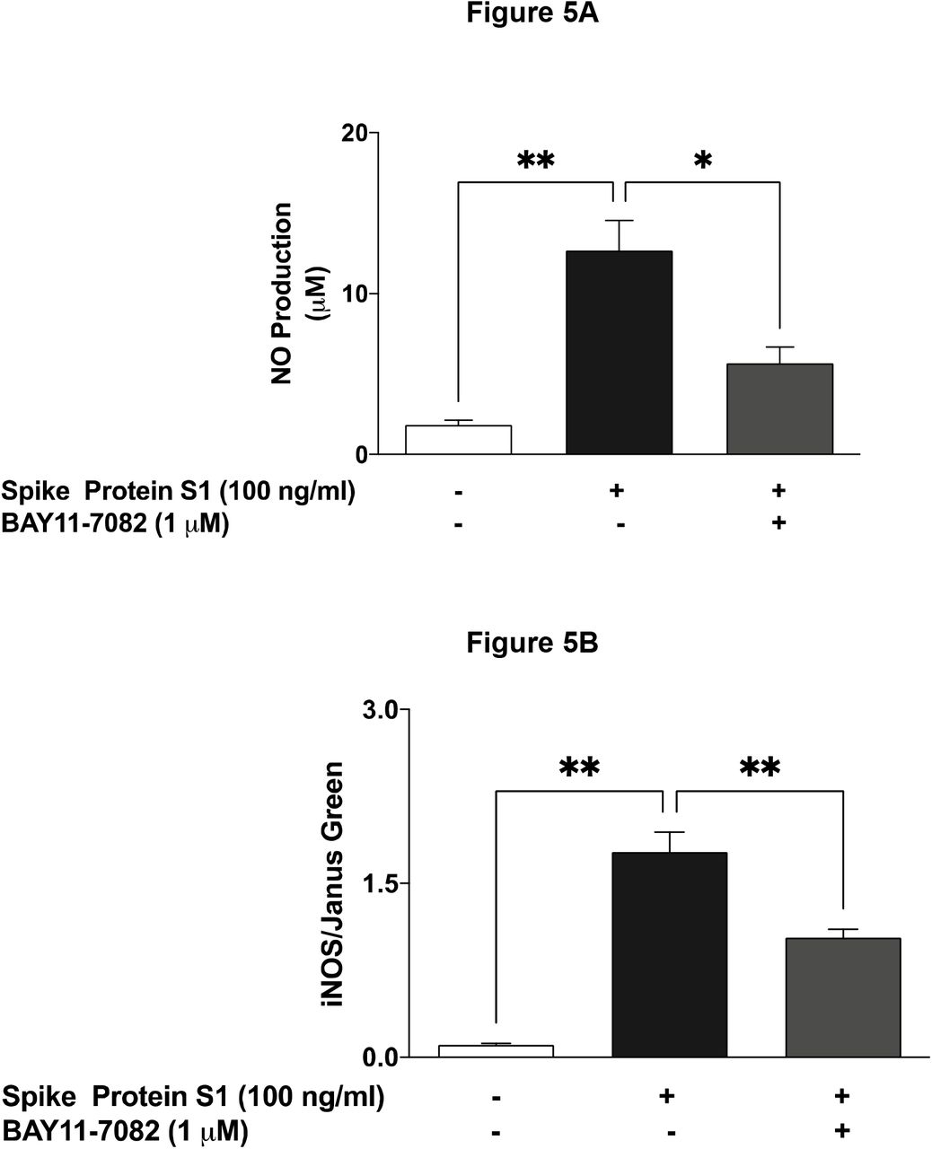 Pre-treatment with BAY11-7082 (1 µM) resulted in inhibition of SARS-CoV-2 spike S1 glycoprotein-induced increased production of NO (A), iNOS protein (B) in BV-2 microglia, following stimulation for 24 h. Culture supernatants were analysed using Griess assay, in-cell western (cytoblot) was used for iNOS detection. Data were analysed using One-way ANOVA followed by a post hoc Tukey's multiple comparison test. *p